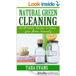 Green Cleaning Books