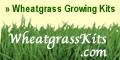 Sign up for Email & Get Special Offers at WheatGrassKits